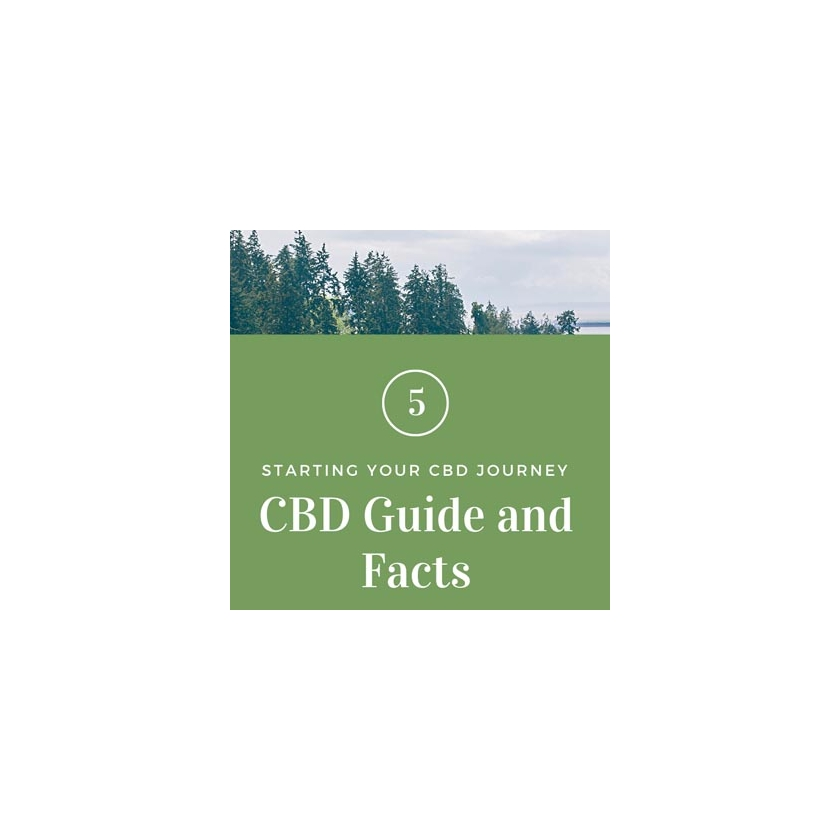 CBD IN THE UK BASIC GUIDE AND FACTS